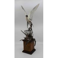 Albany David Burnham-Smith Sculpture Arctic Tern