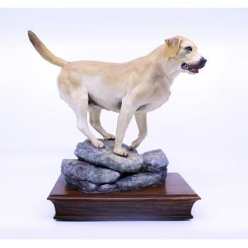Albany Limited Edition Labrador