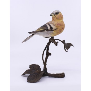 Albany Worcester County Birds Porcelain & Bronze Chaffinch