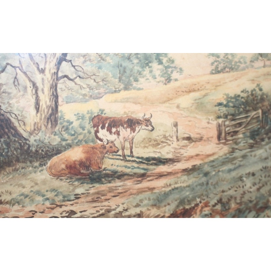 """Edwardian Cattle In Landscape Watercolour """"On Cannock Chase"""""""