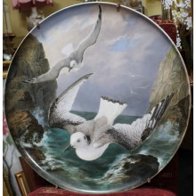 Fine 19th c. Creil et Montereau Painted Seagull Charger