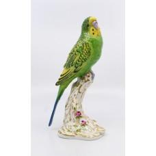 Royal Worcester Bird Green Budgerigar 2663