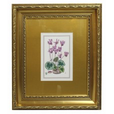 Royal Worcester Cyclamen Porcelain Plaque Set in Gilt Frame