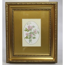 Royal Worcester Sweet Briar Rose Porcelain Plaque Set in Gilt Frame
